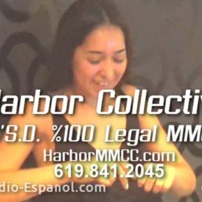 Harbor MCC Gran Opertura2/13/16
