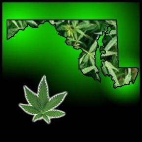 Maryland Cámara aprueba proyecto de ley que endurecer las sanciones demarihuana