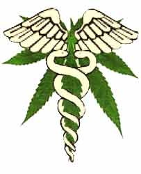 Un estudio halla El Precio del Cannabis Medicinal no afecta el aumenta de uso enjóvenes