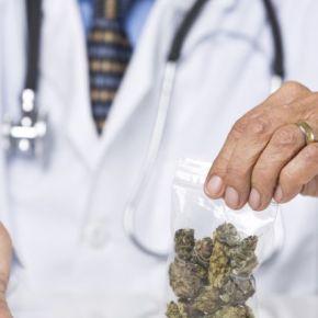 Inician orientaciones a médicos sobre cannabismedicinal